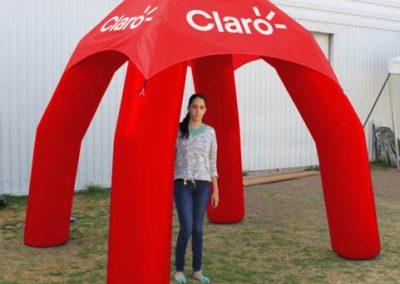 CARPA ARAÑA SELLADA CLARO GT - INCENTIVE