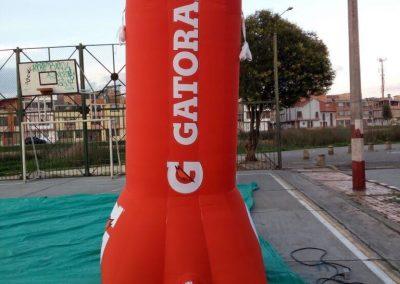 GATORADE 6