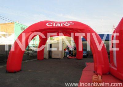 INFLABLE CARPA ARAÑA CLARO NI -INCENTIVE-
