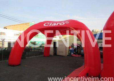 INFLABLE_CARPA ARAÑA CLARO NI -INCENTIVE-