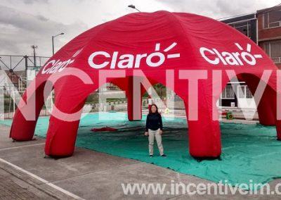 INFLABLE__CARPA ARAÑA CLARO SV -INCENTIVE-