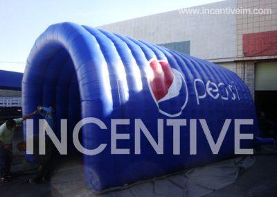 bye_incentive_20130314_1360903284